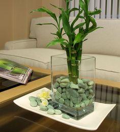 Se puede emplear el bambu para decorar cualquier tipo de ambiente, desde rincones interiores a decoración de patios y terrazas.