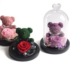 Glass Flask, Teddy Bear Gifts, Best Gift For Girlfriend, Stand By You, By Your Side, Life Partners, Glass Domes, Teddybear, Best Gifts