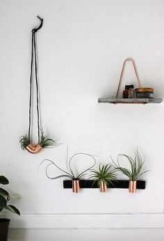 DIY: Minimal Copper Airplant Holders.