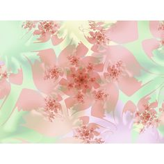 Other Flowers : Zen Cart!, The Art of E-commerce ❤ liked on Polyvore featuring backgrounds, flowers, pink, fondos and nature