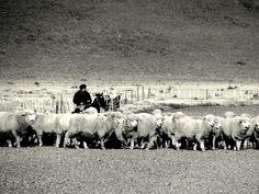 Patagonia <3 Chile