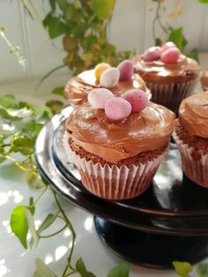 I know how I will be celebrating Easter this year with these gorgeous chocolate cheesecake cupcakes. Chocolate Cream Cheese Cupcakes, Chocolate Cheesecake Cupcakes, Chocolate Icing, Easter Chocolate, Melting Chocolate, Cupcake Tray, Cupcake Cases, Paper Cupcake, Egg Cupcakes