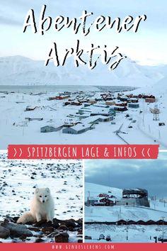 Spitzbergen Urlaub in der Arktis – Lage, Wissenswertes, sowie ein Einblick in die arktische Fauna und Flora. Wo liegt Spitzbergen, woher kommt der Name, wichtige Informationen und ein Einblick in die arktische Fauna und Flora. www.gindeslebens.com #Arktis #Spitzbergen #Abenteuer #Svalbard