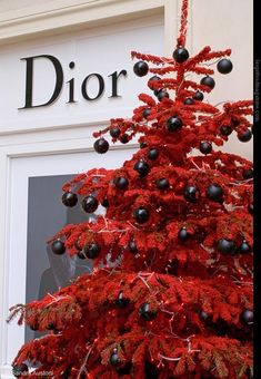 Red Christmas tree with black ornaments...a Dior Christmas!!!! Bebe'!!!