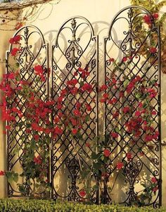Our versatile Scroll Wall Trellis is an artful display and the perfect support for climbing vines. Our versatile Scroll Wall Trellis is an artful display and the perfect support for climbing vines. Wall Trellis, Garden Trellis, Herbs Garden, Fruit Garden, Trellis Design, Trellis Ideas, Bougainvillea Trellis, Small Front Yard Landscaping, Landscaping Ideas