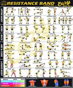 Fitness Exercise Posters by EazyHowTo – GymPrints.net
