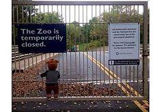 14-Oct-2013 13:59 - KLEUTER MET APENMUTS HÉT BEELD VAN DE SHUTDOWN. Vorige week postte een gebruiker op de socialewebsite Reddit een foto van een kleuter met een apenmuts die voor de gesloten poort van de dierentuin van Washington staat. Het beeld ging viraal en groeide uit tot hét beeld van de Amerikaanse shutdown. Als sinds 1 oktober zijn de overheidsdiensten in het land gesloten.