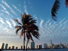 Florida real estate market starting to turn around. Just as even the brightest, warmest sun must eventually set, the era of bargain real estate in Florida may be coming to an end, experts say.