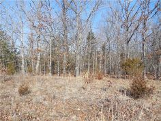 Looking to build a home in the Lake Community? Here is a spectacular place to put it! Close to the entrance so no long trips around the lake.. in the car! 3 partially level, wooded lots, lots start to slope about 3/4 way in. Backs to woods. Plenty of road frontage! Lots 204,205,& 206 of Indian Hills Lake in Cuba MO