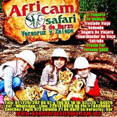 #Africam #Safari te espera este domingo http://www.aventuraextrema.com.mx/africamsafari.htm #Veracruz