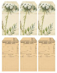 Queen Anne's Lace ~ printable sheet of 6 tags.