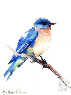 Bluebird 2 Art Print by Suren Nersisyan at Art.com