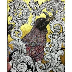 Check out this great #inkandbrush #acrylic #watercolor #illustration of a #crow by @johnathanmartelart. Love the reflective gold background #feather #details and #plant life #filigree... yeah I know that's like the whole #drawing but it's pretty cool isn't it? Great work John!  #CreativeAirship