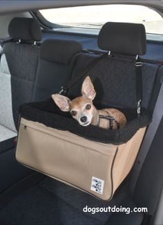Large Beige Dog Car Booster Seat (black lining) - Dogs Out Doing*  Available at www.dogsoutdoing.com    *model and accessories not included