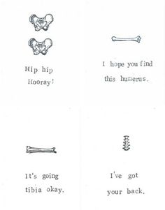 Find This Humerus Card  Funny Skeleton Anatomy Science Medical