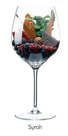 Guía para elegir un buen vino