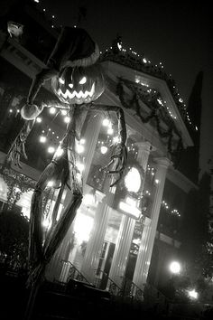 Haunted Mansion Holiday-wish he could get a picture this good! Is have to stay after hours to do so, of course...