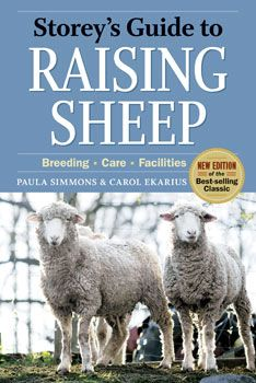 """With some land and a bit of know-how, you can raise your own sheep for food, fiber and the """"shear"""" fun of it. Sheep are especially good animals for small-property owners who don't have the space to raise cattle but want to keep some kind of livestock. Find out how to get started with your own flock with this advice from""""Storey's Guide to Raising Sheep,"""" the classic, go-to authority on all things sheep.data-pin-do="""