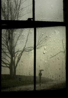 rain, rain drops, umbrella, umbrellas, windows - inspiring picture on . Walking In The Rain, Singing In The Rain, Rainy Night, Rainy Days, Night Rain, Rainy Weather, I Love Rain, Robert Frank, Parasols