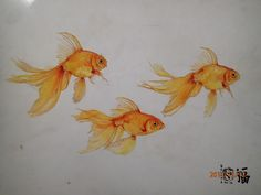 gold japanese fish  painting, i love that fact that it was a painting from the cover of office paper lol