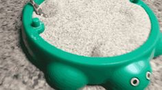 actually, cute. babies are babies. little snake plays in tiny sandbox.