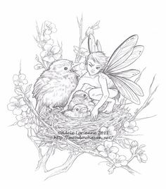 Fairy Coloring Pages For Adults Enchanted Designs Fairy Mermaid