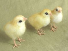 Needle felted chick, Easter basket holiday decor, these look so real!!