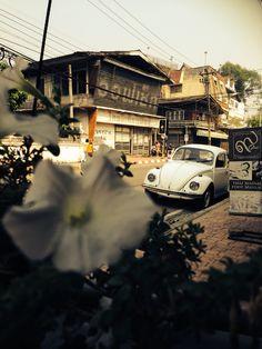In love in Chaing Mai