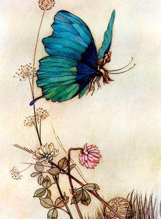 Warwick Goble illustrated Fairy Fridge Magnet (2.95 USD) by FridgeArtMagnets