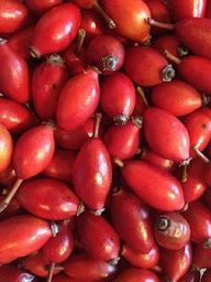 25 things to do with Rosehips. From me to you: Rosehip oil is a GREAT anti-aging oil.