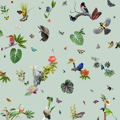 online shop Birds Wallcovering - Ethnic Chic - Home Couture