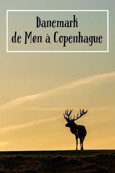 Mons Klint, Camping Sauvage, Long Week-end, Voyage Europe, Week End, Moose Art, Guide, World, Travelling