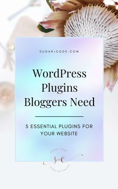WordPress Plugins Bloggers Need   WordPress for Beginners - Are you feeling overwhelmed by the amount of plugins you can choose for your blog? For bloggers, it's important only to have the essential plugins for your website. Click here for the five best plugins for bloggers. Sugar and Code   Plugins for WordPress   Blogging for Beginners   Website Design   Blogging 101   Blogging Tips   Plugins for Bloggers #blog #wordpress #onlinebusiness #entrepreneur #website #plugins Entrepreneur Website, Seo Basics, Etsy Seo, Email Marketing Design, Seo For Beginners, Wordpress Website Design, Seo Tips, Feeling Overwhelmed, Wordpress Plugins