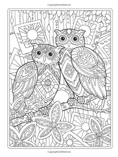 Creative Haven Owls Coloring Book artwork by Marjorie Sarnat * Owl Owls Coloring pages colouring adult detailed advanced printable Kleuren voor volwassenen coloriage pour adulte anti-stress kleurplaat voor volwassenen Line Art Black and White Abstract Doodle Zentangle Paisley