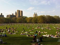 Sheep's Medow, Central Park, New York City. Everyone's favorite in-city sunning spot all summer long.