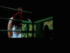 """""""Una especie en un espacio"""" Videoinstalación en tiempo real. Registro Cristián Monetti. #NocheMuseosCba #LauraColombo en Cepia #UNC"""