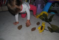 Spring Math: Counting Seeds and Flowers