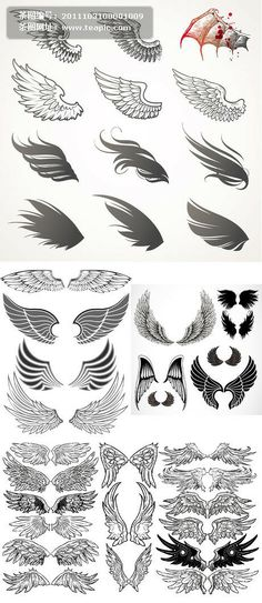 Cool black ornate wings vector material For Alexis Doodle Drawing, Wings Drawing, Body Art Tattoos, Sleeve Tattoos, Wing Tattoos, Art Sketches, Art Drawings, Tattoo Band, Wing Tattoo Designs