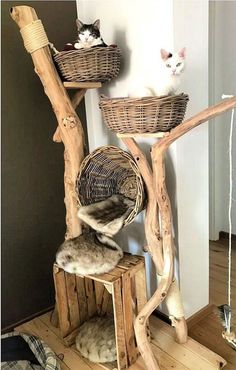 Cat Tree Plans, Tree House Plans, Cat House Plans, Cat Tree House, Cat House Diy, House For Cats, Lit Chat Diy, Diy Cat Tower, Grand Chat
