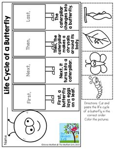 Life Cycle of a Butterfly! Cut and Paste to show the Sequence of events!