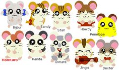 Hamtaro hamsters with names