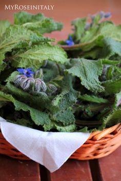 Borragine, il fiore sa di cetriolo