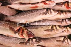 Royalty Free Stock Photo available for sale at iStock: Fish Markets - European Seabass, Dicentrarchus labrax