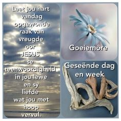 Afrikaanse Quotes, Goeie More, Bible Verses Quotes, New Week, Positivity, Amen, Diamond, Friends, Flowers