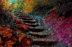Η σκάλα της ζωής: πέντε βήματα για καθημερινή αυτοβελτίωση - Με Υγεία Photoshop, Painting, Image, Personal Development, Powerful Women, Health, Life, Stairway, Raising Girls