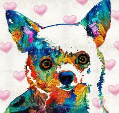 Colorful Chihuahua Art By Sharon Cummings by Sharon Cummings