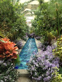 United States Botanic Garden - Southwest Washington - 107 tips Exotic Plants, Tropical Plants, Dc Travel, Travel List, Travel Goals, National Botanical Gardens, Garden Bugs, Water Features, Garden Features