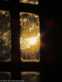 Through the window, a peek at the sunlight. Window View, Rear Window, Through The Window, Morning Light, Morning Sun, Light And Shadow, Belle Photo, Sunlight, Art Photography