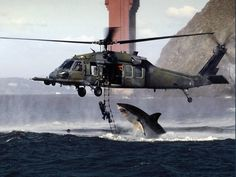 Wow, shark trying to attack a helicopter Shark Week, Orcas, Shark Pictures, Funny Pictures, Shark Images, Shark Photos, Crazy Pictures, Great White Shark Attack, Attack Helicopter