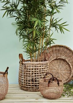Best way to do it in the simplest way, is by getting new indoor furniture, such as rattan! We have 25 best rattan indoor planter ideas Estilo Tropical, Plant Basket, Bamboo Basket, Wicker Baskets, Bamboo Planter, Wicker Purse, Baby Baskets, Picnic Baskets, Home Decor Ideas